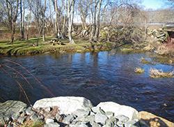 Acushnet River Reserve